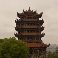 Q_Wuhan