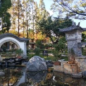 Garten Altstadt Dali