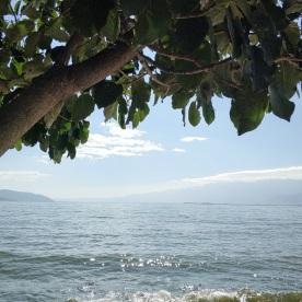 Blick auf den Erhai See