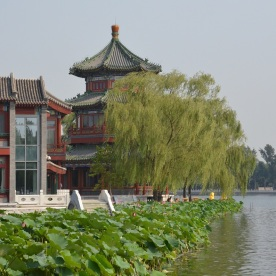 Qianhai See