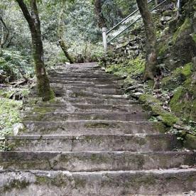 Mal wieder Treppen